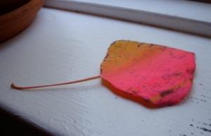 hot pink aspen leaf!