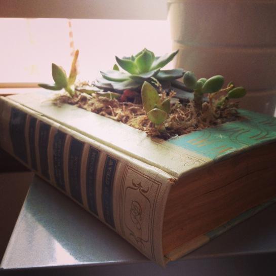 succulent-book