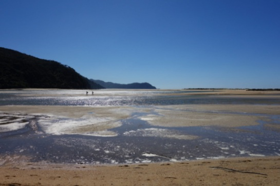abel-tasman-low-tide-crossing-awaroa